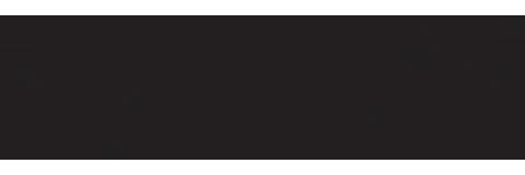Logo Testata